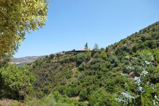 Organic Trees and Bird farm Luxury Villa in Chania, The Green Orange Villa